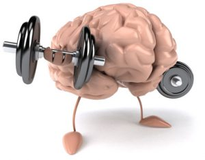 brain-muscle in bodybuilding